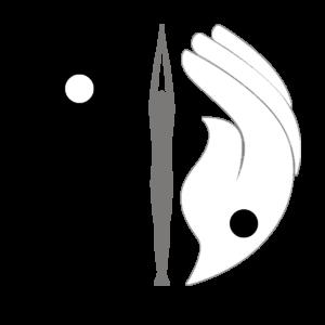 osteopathe bayonne yoga therapeutique shiatsu